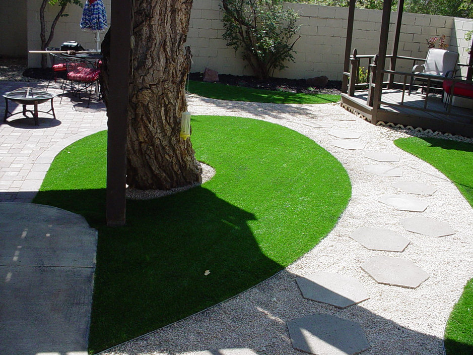 Artificial Turf Cost Canon City, Colorado Lawn And Garden, Beautiful ...