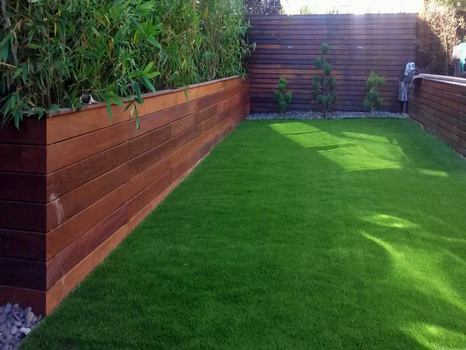 Backyard landscaping ideas for colorado : Artificial turf walden colorado backyard playground