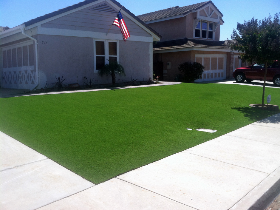 Grass Turf Alma Colorado Lawns Front Yard Ideas