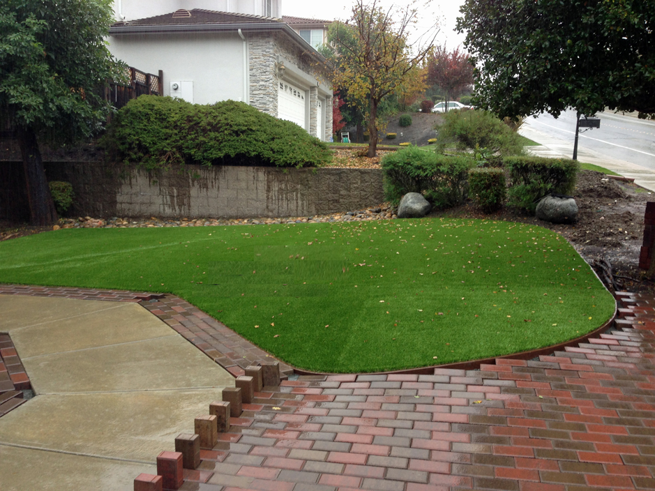 Green Lawn Indian Hills Colorado Landscaping Backyard Ideas
