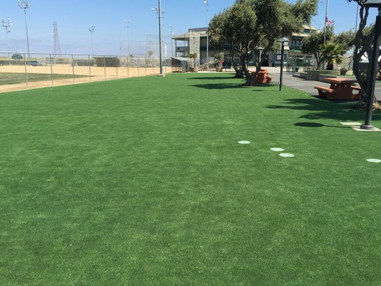 Artificial Grass Photos: Artificial Grass Carpet Delta, Colorado Paver Patio, Recreational Areas