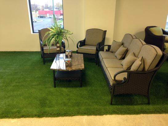 Artificial Grass Photos: Artificial Grass Carpet Peyton, Colorado Landscape Photos, Commercial Landscape