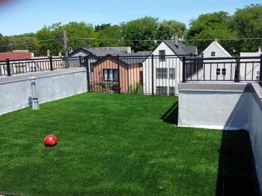 Artificial Grass Photos: Artificial Grass Carpet Silver Plume, Colorado Pet Paradise, Roof Top