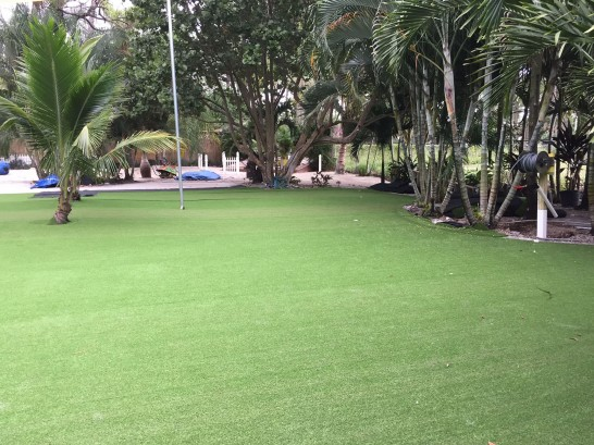 Artificial Grass Photos: Artificial Grass Cedaredge, Colorado Garden Ideas, Commercial Landscape