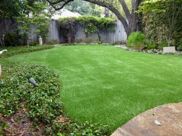 Artificial Grass Photos: Artificial Grass Genoa, Colorado Landscape Rock, Backyard Garden Ideas