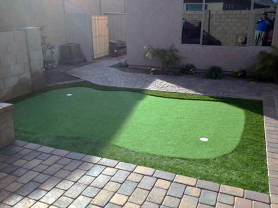 Artificial Grass Photos: Artificial Grass Installation Guffey, Colorado Outdoor Putting Green, Backyard Garden Ideas