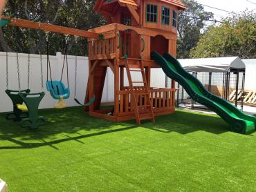 Artificial Grass Photos: Artificial Grass Installation Johnson Village, Colorado Paver Patio, Backyards