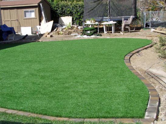 Artificial Grass Photos: Artificial Grass Installation Keota, Colorado Landscaping Business, Beautiful Backyards
