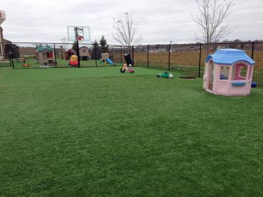 Artificial Grass Photos: Artificial Grass Red Cliff, Colorado Indoor Playground, Commercial Landscape