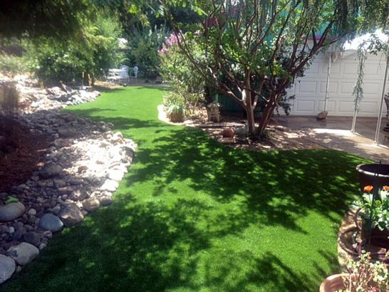Artificial Grass Seven Hills, Colorado Home And Garden, Small Backyard Ideas artificial grass