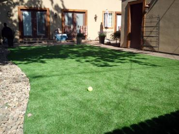 Artificial Grass Photos: Artificial Grass Snowmass Village, Colorado Landscape Ideas, Backyard Landscaping