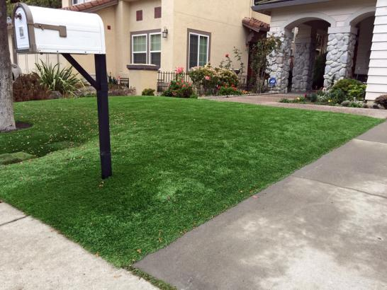 Artificial Grass Photos: Artificial Lawn Alma, Colorado Backyard Playground, Front Yard Landscaping Ideas