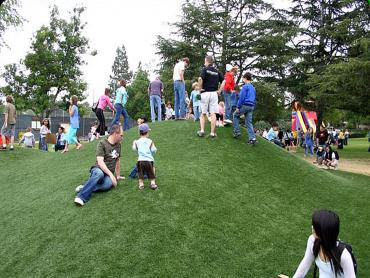 Artificial Grass Photos: Artificial Lawn De Beque, Colorado Paver Patio, Parks