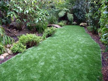 Artificial Grass Photos: Artificial Lawn El Moro, Colorado Garden Ideas, Backyard Designs
