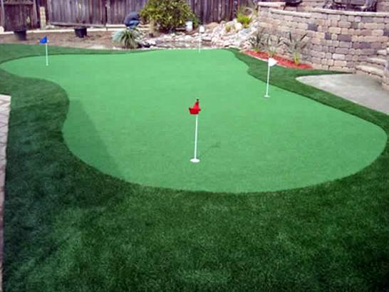 Artificial Grass Photos: Artificial Lawn Prospect Heights, Colorado Artificial Putting Greens, Backyard Landscaping Ideas