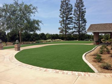 Artificial Grass Photos: Artificial Lawn Wiley, Colorado Lawn And Garden, Front Yard Ideas