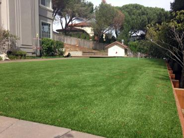 Artificial Grass Photos: Artificial Turf Cost Nucla, Colorado Home Putting Green, Backyard