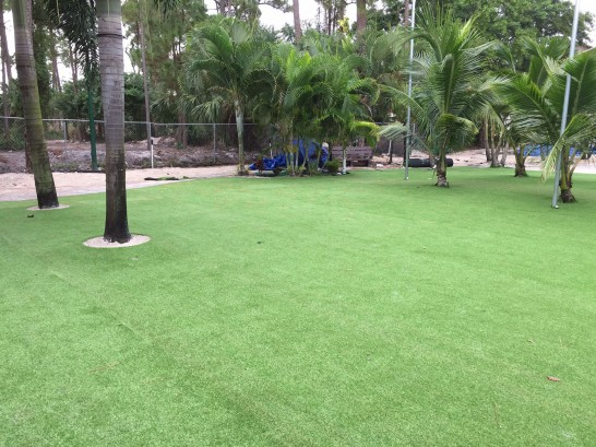 Artificial Grass Photos: Artificial Turf Installation Sheridan Lake, Colorado Home And Garden, Commercial Landscape