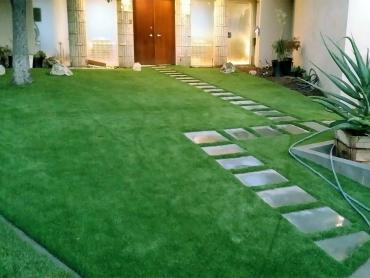 Artificial Grass Photos: Artificial Turf Romeo, Colorado Lawn And Garden, Front Yard Ideas