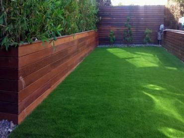 Artificial Grass Photos: Artificial Turf Walden, Colorado Backyard Playground, Backyard Landscaping Ideas
