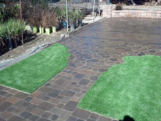 Artificial Grass Photos: Best Artificial Grass Coal Creek, Colorado Landscape Ideas, Beautiful Backyards