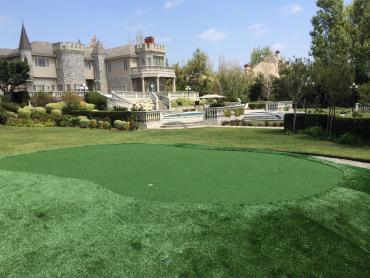 Artificial Grass Photos: Best Artificial Grass Columbine, Colorado How To Build A Putting Green, Front Yard