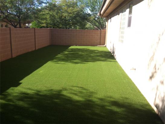 Artificial Grass Photos: Fake Grass Carpet Acres Green, Colorado Landscaping Business, Small Front Yard Landscaping