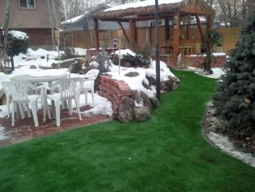 Artificial Grass Photos: Fake Grass Carpet Centennial, Colorado Paver Patio, Small Backyard Ideas