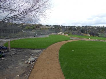 Artificial Grass Photos: Fake Grass Carpet Dotsero, Colorado City Landscape