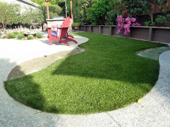 Artificial Grass Photos: Fake Grass Carpet Eads, Colorado Dog Running, Beautiful Backyards