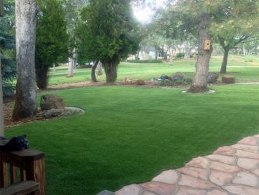 Artificial Grass Photos: Fake Grass Carpet Log Lane Village, Colorado Lawn And Landscape, Front Yard Ideas