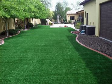 Artificial Grass Photos: Fake Grass Carpet Meridian, Colorado Garden Ideas, Backyard Ideas