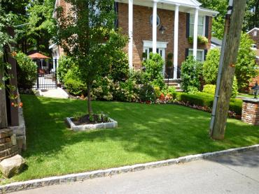 Artificial Grass Photos: Fake Grass Carpet Merino, Colorado Roof Top, Small Front Yard Landscaping