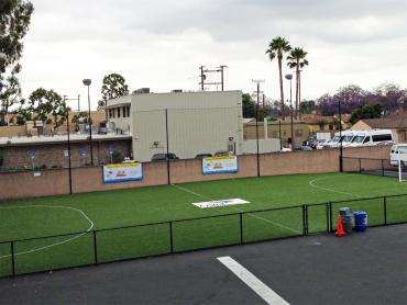 Artificial Grass Photos: Fake Grass Castle Pines, Colorado Stadium, Commercial Landscape