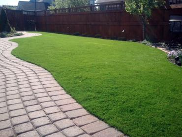 Artificial Grass Photos: Fake Grass Frederick, Colorado Dog Run, Backyard Landscaping Ideas