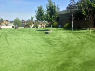 Artificial Grass Photos: Fake Grass Johnstown, Colorado Gardeners, Recreational Areas