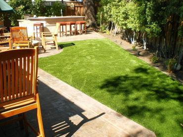 Artificial Grass Photos: Fake Grass Mead, Colorado Landscape Photos, Backyard Designs
