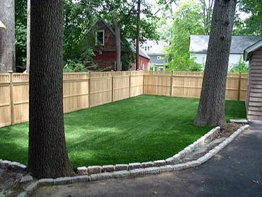 Artificial Grass Photos: Fake Grass Paonia, Colorado Home And Garden, Backyard Garden Ideas