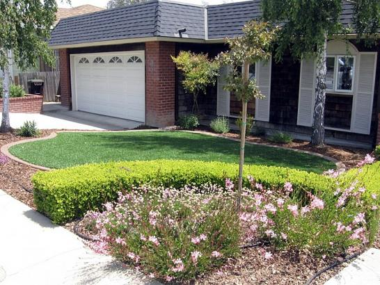 Artificial Grass Photos: Fake Lawn Basalt, Colorado Lawn And Landscape, Landscaping Ideas For Front Yard