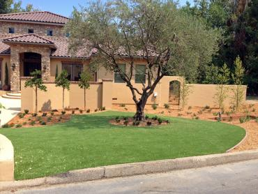 Artificial Grass Photos: Fake Lawn Cascade-Chipita Park, Colorado Design Ideas, Front Yard