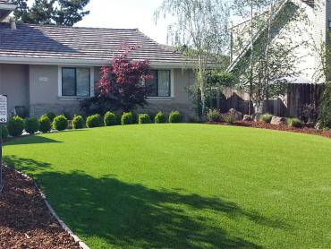 Artificial Grass Photos: Fake Lawn Dillon, Colorado Gardeners, Front Yard Landscaping Ideas