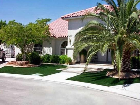 Artificial Grass Photos: Fake Turf Buena Vista, Colorado Paver Patio, Front Yard Landscaping