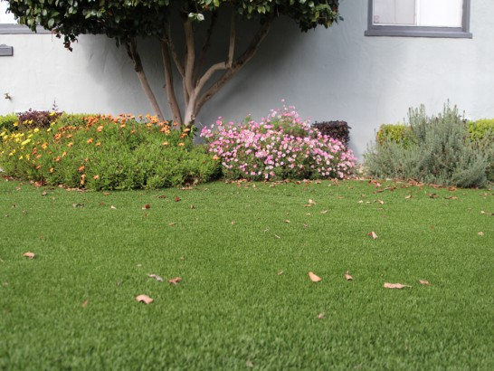 Artificial Grass Photos: Fake Turf Haxtun, Colorado Garden Ideas, Landscaping Ideas For Front Yard
