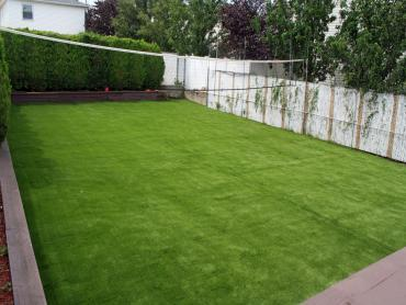 Artificial Grass Photos: Fake Turf Hillrose, Colorado Design Ideas, Backyard