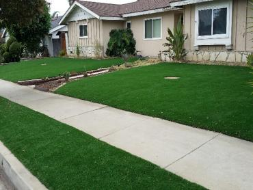 Artificial Grass Photos: Fake Turf Manassa, Colorado Landscape Design, Front Yard Landscaping Ideas