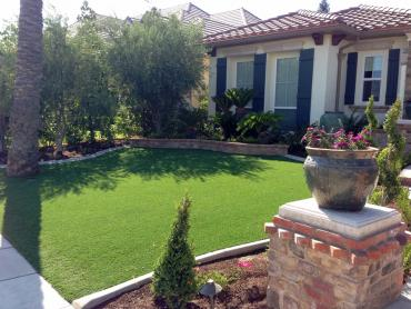 Artificial Grass Photos: Fake Turf Westcreek, Colorado Garden Ideas, Front Yard Landscaping Ideas