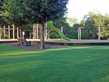 Artificial Grass Photos: Faux Grass Ault, Colorado Landscape Photos, Parks