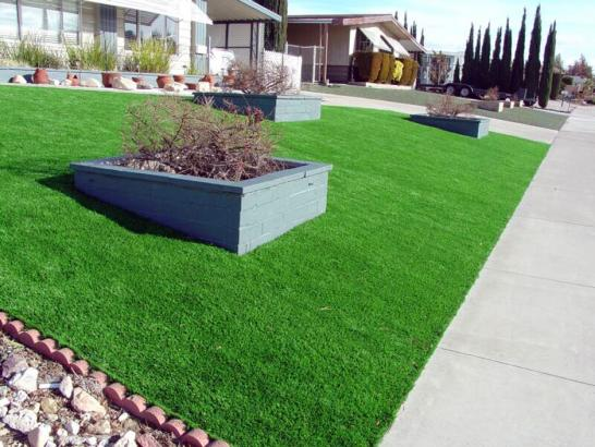 Artificial Grass Photos: Faux Grass Avondale, Colorado Lawn And Landscape, Front Yard Landscaping