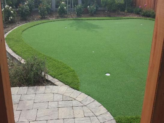 Artificial Grass Photos: Faux Grass Franktown, Colorado Roof Top, Backyard Landscape Ideas