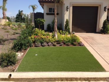 Artificial Grass Photos: Faux Grass Glenwood Springs, Colorado Lawns, Front Yard Ideas